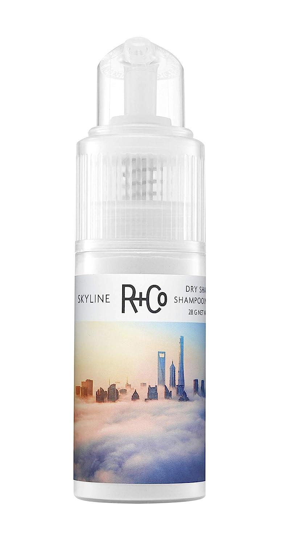 R+Co Skyline Dry Special Campaign Shampoo Oz Powder Sale 1.0