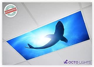 Ocean 007 2x4 Flexible Fluorescent Light Cover
