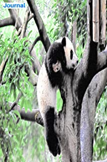 """Journal: panda climbing a tree in the forest: 6"""" x 9"""", 103 pages, For everyone: man, woman, children, teenagers and entrep..."""