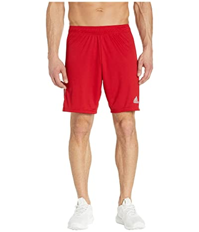 adidas Tastigo 19 Shorts (Power Red/White) Men