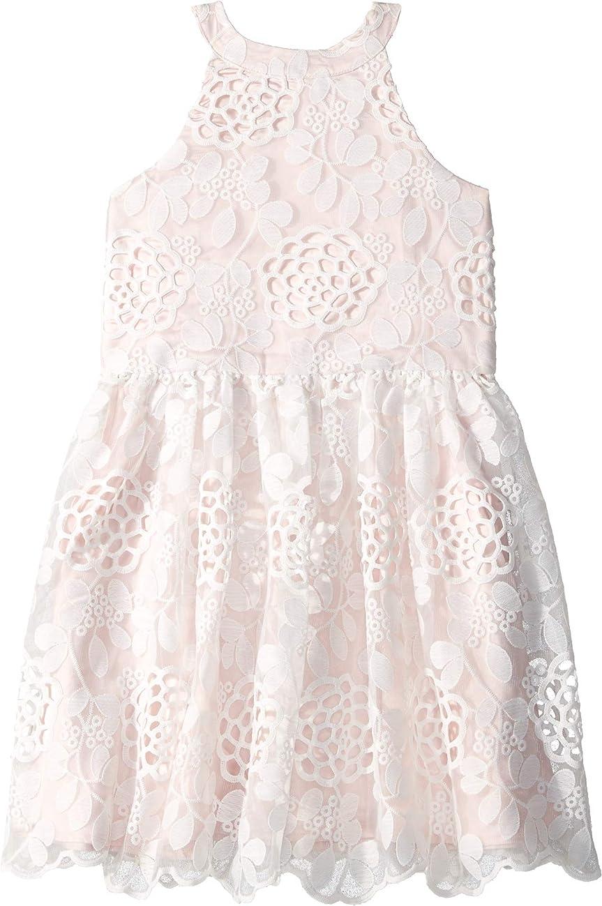 Bardot Junior Womens Primrose Lace Dress (Big Kids)