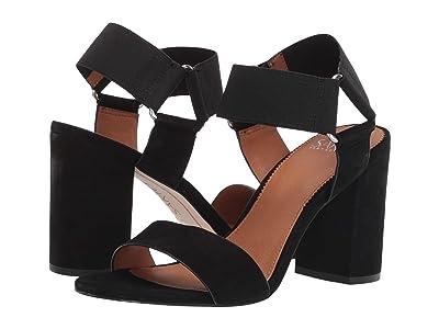 Franco Sarto Olivia (Black Suede) High Heels