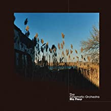 The Cinematic Orchestra To Build A Home Instrumental Digital Music