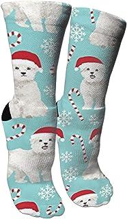靴下 抗菌防臭 ソックス マルタ犬クリスマス休暇スポーツスポーツソックス、旅行&フライトソックス、塗装アートファニーソックス30センチメートル長い靴下