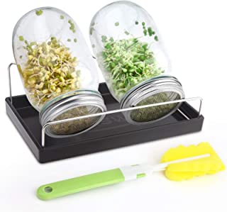Sprouting Jar Kit-2 Wide Mouth Quart Mason Jars with 316 Stainless Steel Screen Sprout Lids,Melamine Tray,Stand and Cannin...