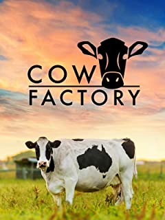 Cow Factory