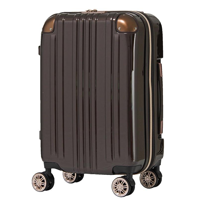 自己尊重クアッガドレススーツケース ファスナータイプ ダブルキャスター 鏡面ボディ TSAロック 軽量 機内持込 Sサイズ [一年保証]