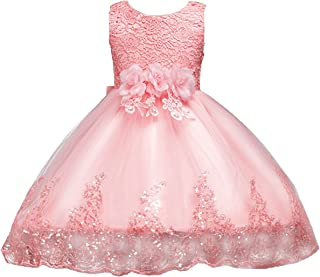 Kids Flower Girls Vintage Embroidered Sequins Dress Short Trim Layered Wedding Baptism Pageant Party Gown