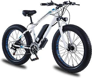 Elektrisk mountainbike, snöcykel för vuxna, fettdäckcykel elcykel all terräng, med avtagbart litiumjonbatteri, 750W kraftf...