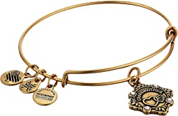 Alex and Ani - Because I Love You Grandmother III Bangle