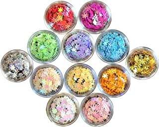 Nail Glitter 12 Boxes Nail Art Flakes Hexagon Confetti Festival Glitter Colorful Chunky Glitters for Hair Face and Eye Make Up Foil Flakes (12Colors,Snowflake)