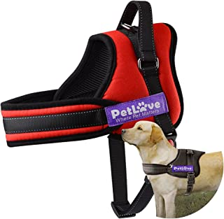 Best pug dog harness Reviews