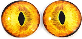 Yellow Tabby Cat Glass Eyes Realistic Animal Pair for Art Dolls, Sculptures, Props, Masks, Fursuits, Jewelry Making, Taxidermy, and More (25mm)