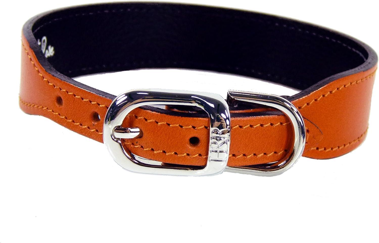 Hartman & pink 1418 Plain Nickel Plated Dog Collar, 18 to 20Inch, orange