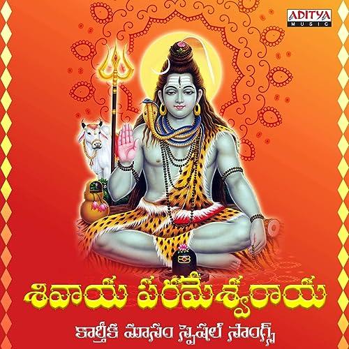 tanikella bharani nalona sivudu galadu album