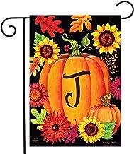 Briarwood Lane Fall Pumpkin Monogram Letter J Garden Flag 12.5