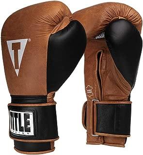 Title Boxing Vintage Leather Bag Gloves