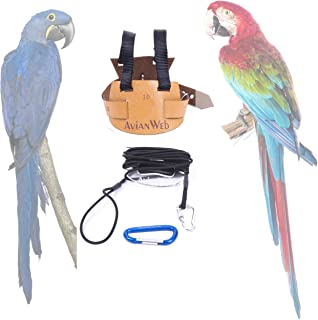 Avianweb EZ Macaw Bird Harness with 8 Ft Leash