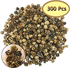 Hslife 300 Pcs Pine Cones for Crafts Mini Brown Pine Cones in Bulk Mini Natural Pinecones Fall Decorations for Home Thanks...
