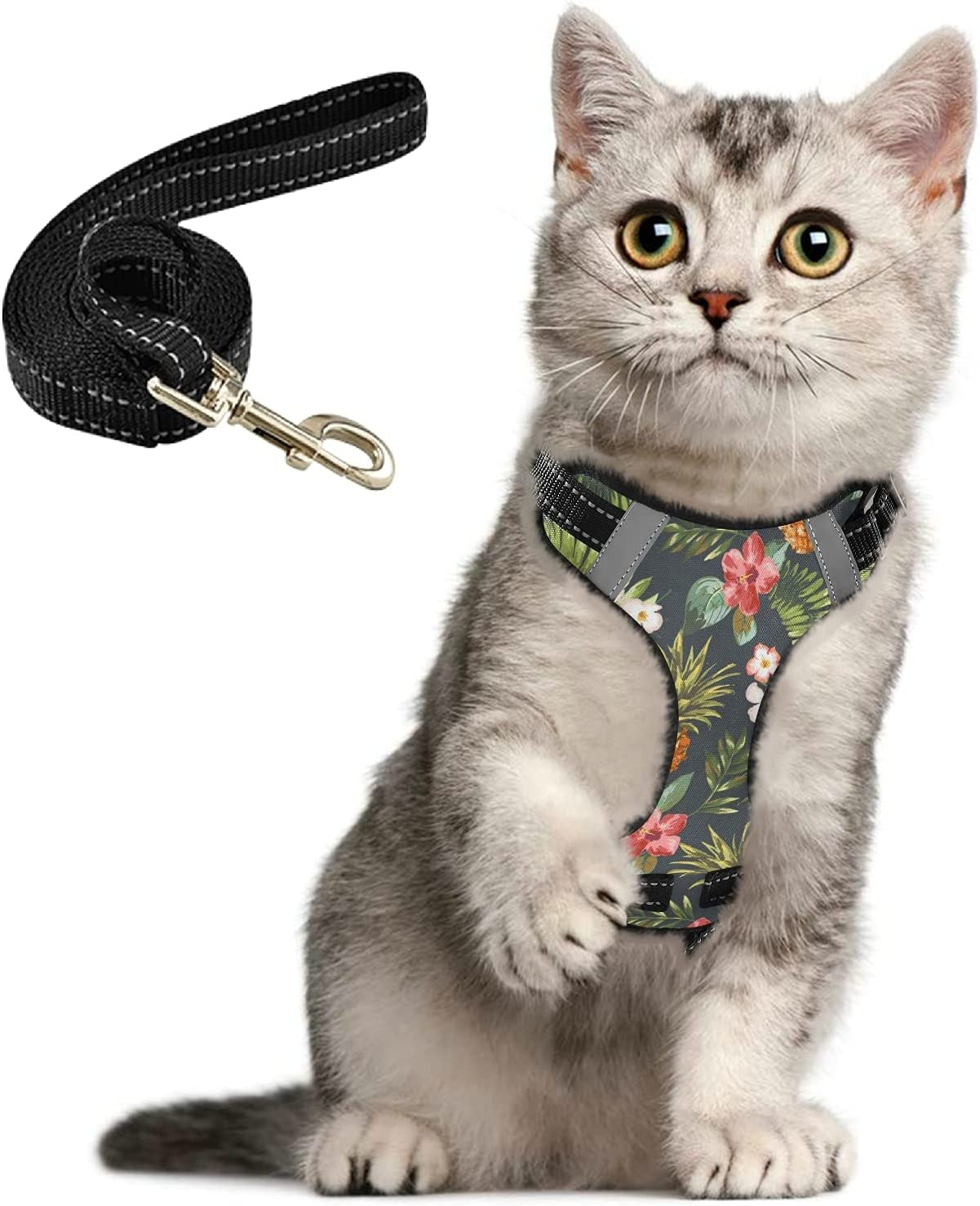 Pineapple Flowers Tropical Cash special price Cat Harness Walking Set Leash for Don't miss the campaign and
