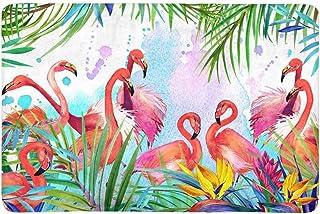InterestPrint Tropical Exotic Flamingo Bird Leaves and Summer Flowers Doormat Indoor Outdoor Entrance Rug Floor Mats Shoe ...