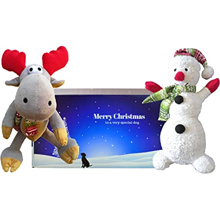 Little Festive Ted Scarlaroo Christmas dog toys present Small Squeaky Dog Gifts for Dogs