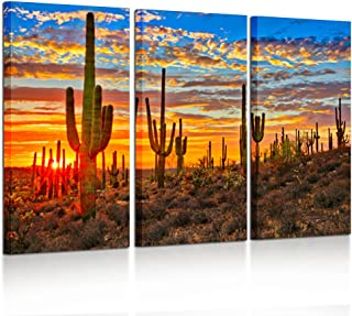 Kreative Arts - Large 3 Piece Canvas Wall Art Beautiful Sunset Landscape of National Park Arizona Sonoran Desert Cactus Pictures Stretched and Framed Ready to Hang for Home Office Decor 16x32inchx3pcs