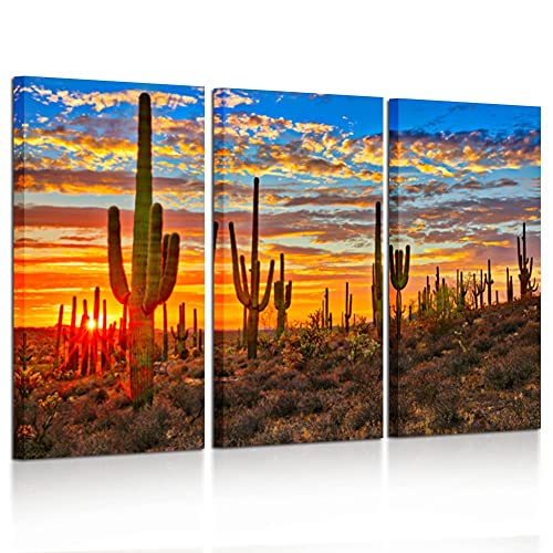 Arizona Sky Sunset Art Print Home Decor Wall Art Poster G