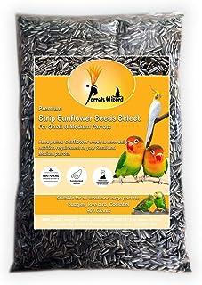 Parrots Wizard Small Size Sunflower Seeds for Bird 900 G