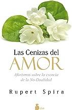 LAS CENIZAS DEL AMOR (Spanish Edition)