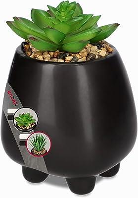 KADAX Plantas suculentas en maceta de cerámica, plantas artificiales en maceta, pequeñas plantas artificiales, plantas decorativas para salón, oficina (altura 16 cm, antracita)