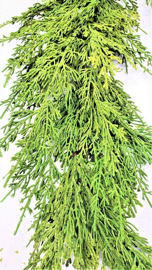 Evron International G841 Artificial Green Cedar Chr Manufacturer Now on sale regenerated product Garland Faux