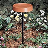 Allied Precision 12 in. Heated Bird Bath with Metal St