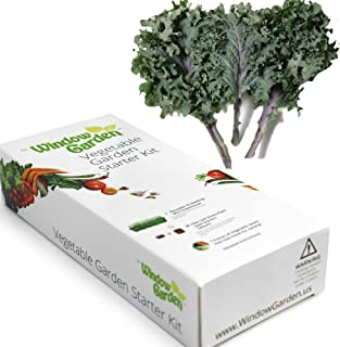 Garden Starter Kit (Kale) Grow a Garden by Seed. Germinate Seeds on Your Windowsill Then Move to a Patio Planter or Vegetable Patch. Mini Greenhouse System Makes it Foolproof, Easy and Fun.