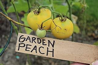 Garden Peach Tomato - Yellow and Fuzzy Awesome Tomato - 50 Seeds