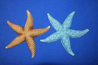 Salty Pelican Starfish Theme Bathroom Wall Decor Vivid Colors Poly Resin, 6 1/4