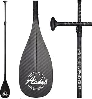 Best boardworks adjustable paddle Reviews