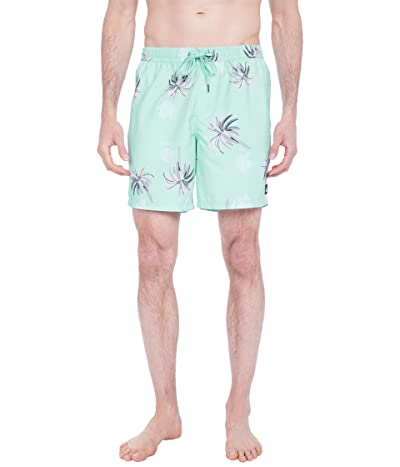 Quiksilver Royal Palms Volley 17 Men