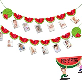 Watermelon Photo Banner Watermelon Party Supplies One in a Melon 1st Birthday Party Supplies Decorations Monthly Milestone...