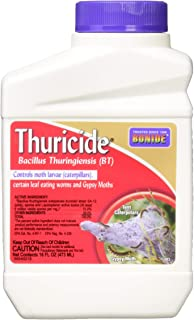 Bonide B011TCCSM0 803 Thuricide BT Insect Killer, 16-Ounce (2 Pack), 2 Pack of 16 oz, Multicolor