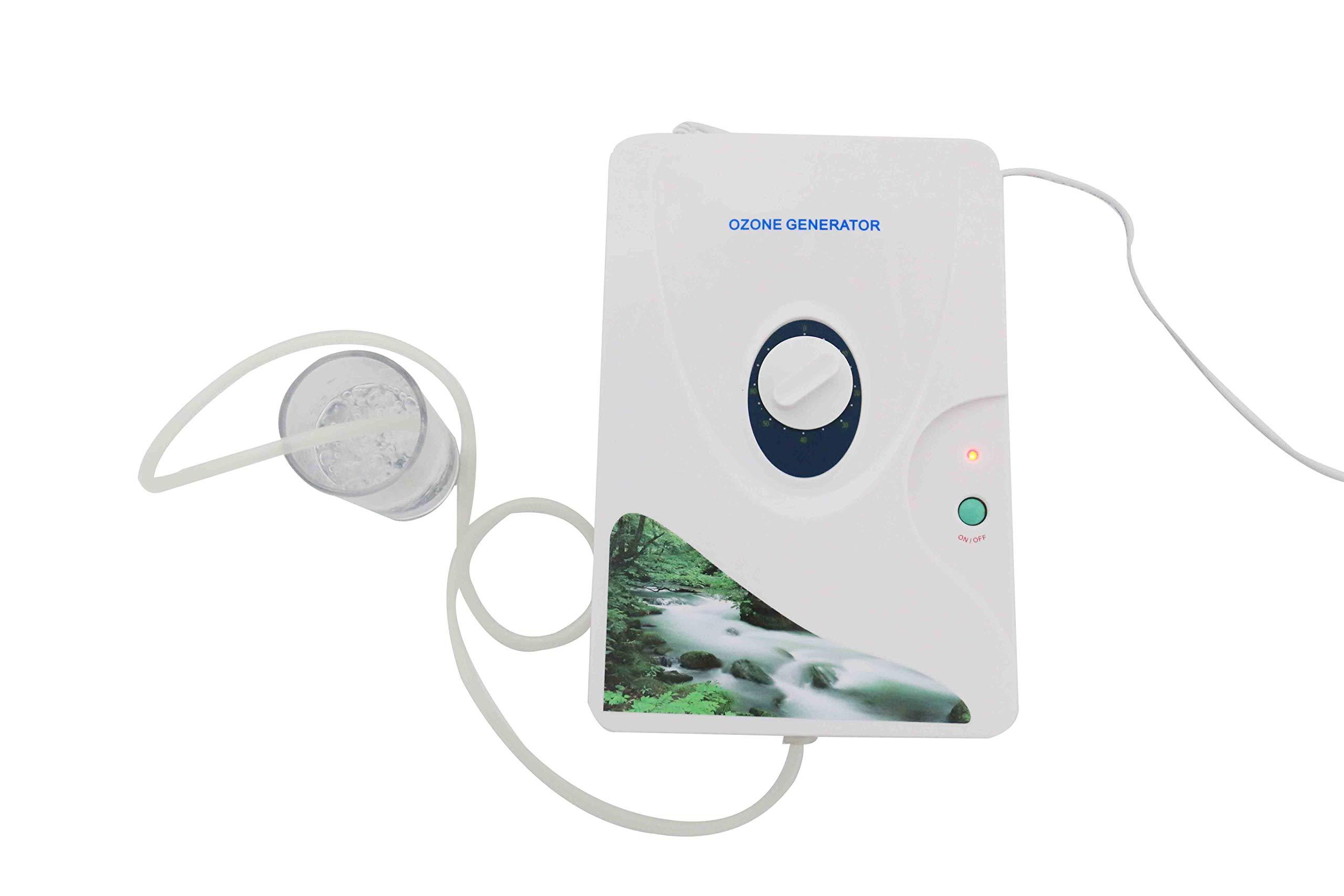 El ozono purificador de agua y aire 600 mg/h | Esterilizador más ...