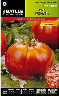 Semillas Hortícolas - Tomate Muchamiel - Batlle