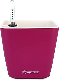 "Aquaphoric Self Watering Planter (5"") + Fiber Soil = Foolproof Indoor Home Garden. Decorative Planter Pot for All Plants, Flowers, Herbs, African Violets, Succulents. Easy Looks Great. (Wine Matte)"