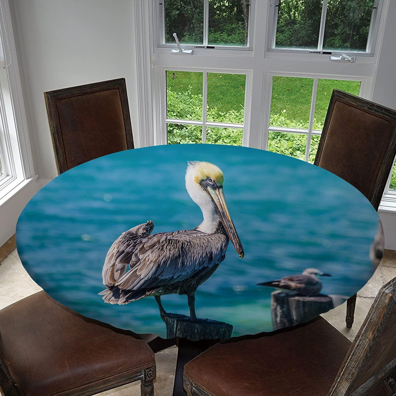 Tstyrea Boston Mall Pelican in The Ocean Elastic Bird Table Philadelphia Mall Sea Round Cloth