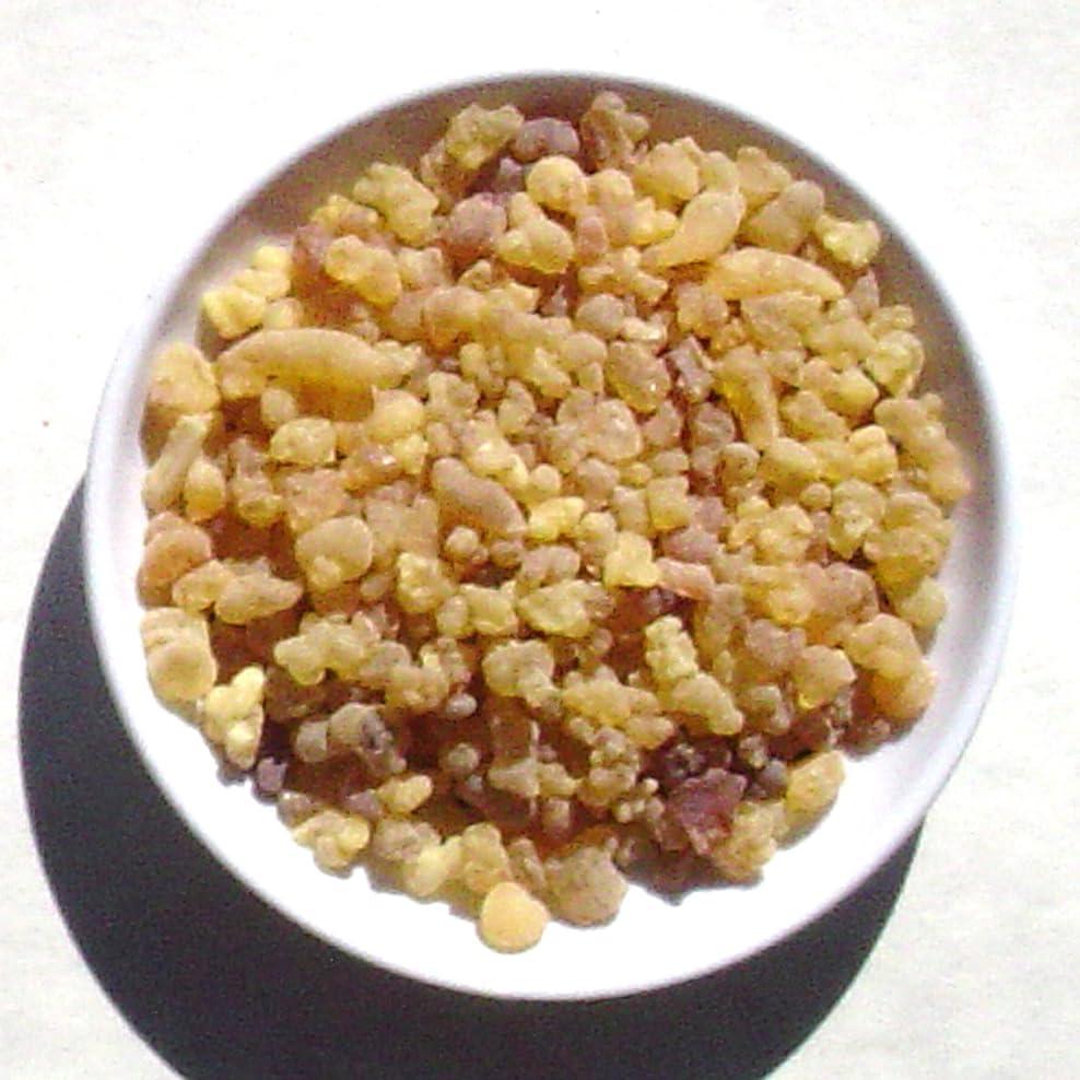 ハリケーン首暗いArabian Frankincense?–?1ポンド?–?Traditional Incense (樹脂)バルク