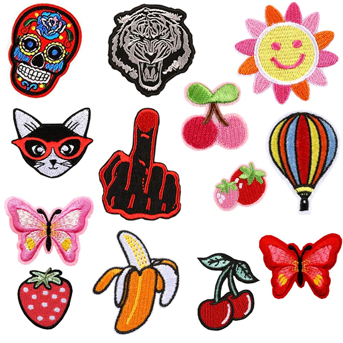 Cute Cat Fruit Butterfly Sew Iron on Patches Embroidery Applique Patches for Arts Crafts DIY Decor, Jeans, Jackets, Clothing (13 Pcs)