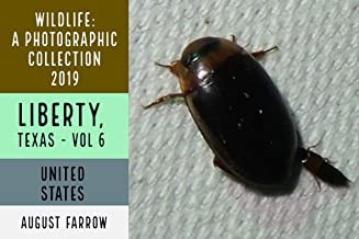 Wildlife: 3 Days in Liberty, Texas - 2019: A Photographic Collection, Vol. 6 (Wildlife: Liberty, Texas)