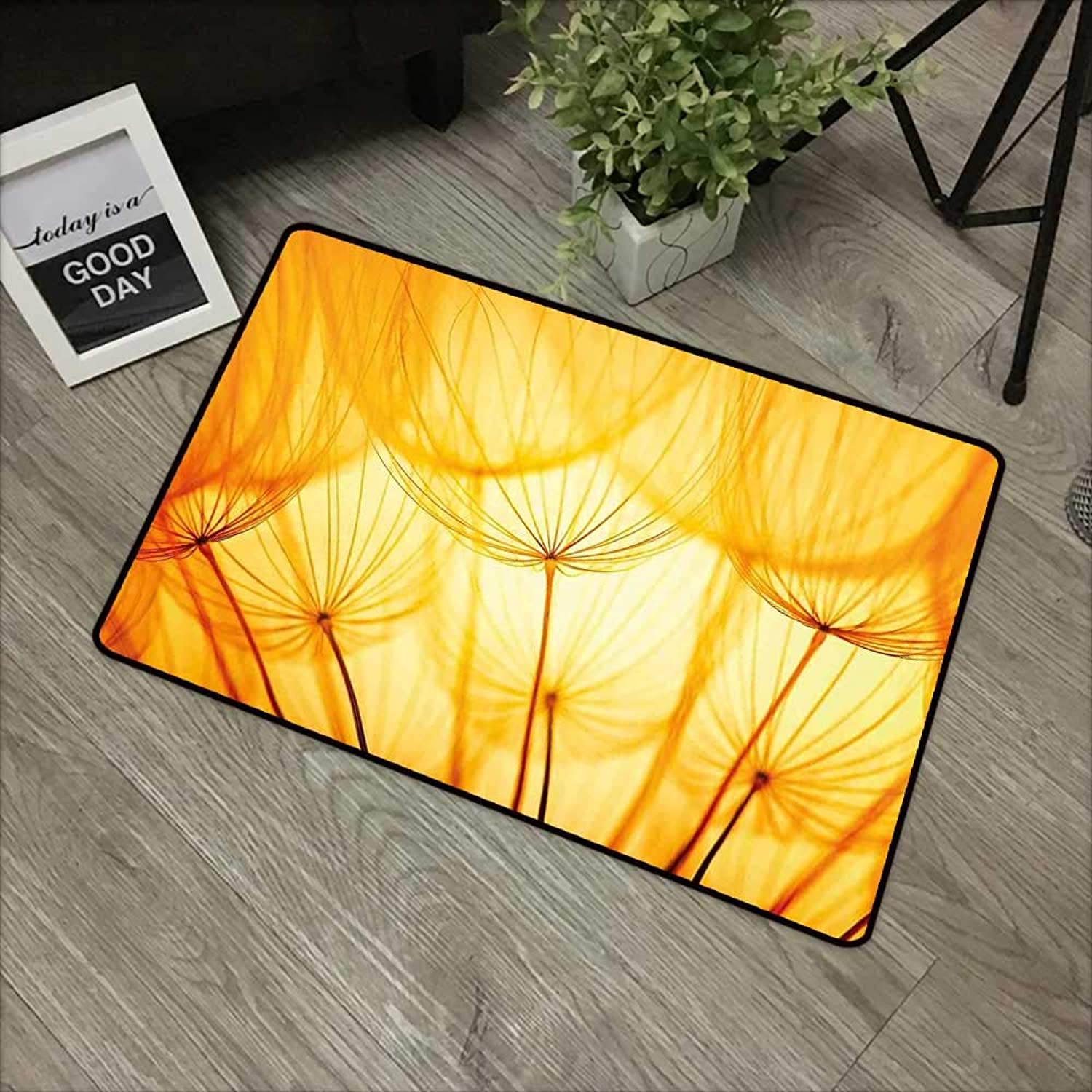 Interior Door mat W35 x L59 INCH Yellow,Joy of Dandelion Flower with Garden Seeds in Hot Summer Time Themed Artwork,Merigold and White with Non-Slip Backing Door Mat Carpet