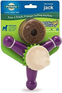 PetSafe Busy Buddy Jack Dog Toy, Chew Toy with Treats