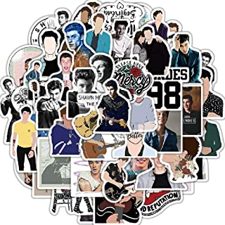 Shawn Mendes 50 Pack Stickers Trendy Laptop Stickers Guitar Computer Water Bottle Stickers for Teen Children Singer Shawn Mendes Stickers for Water Bottles